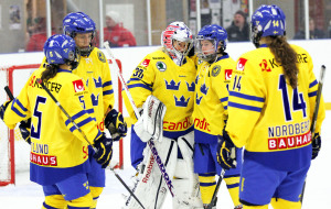 Nyhet-ishockeyforb