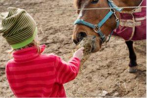 barn med häst